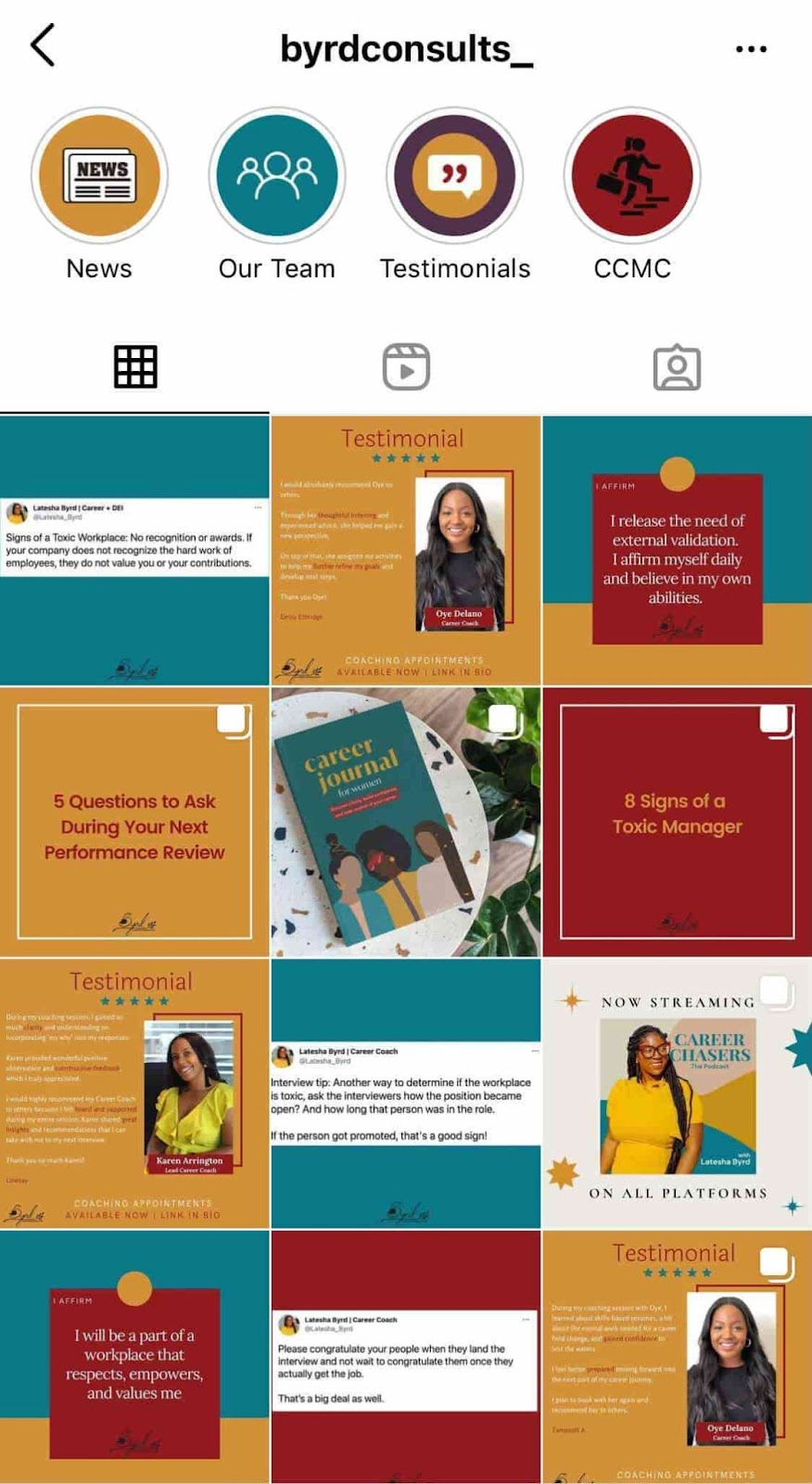 Byrd Consults example of cohesive instagram theme