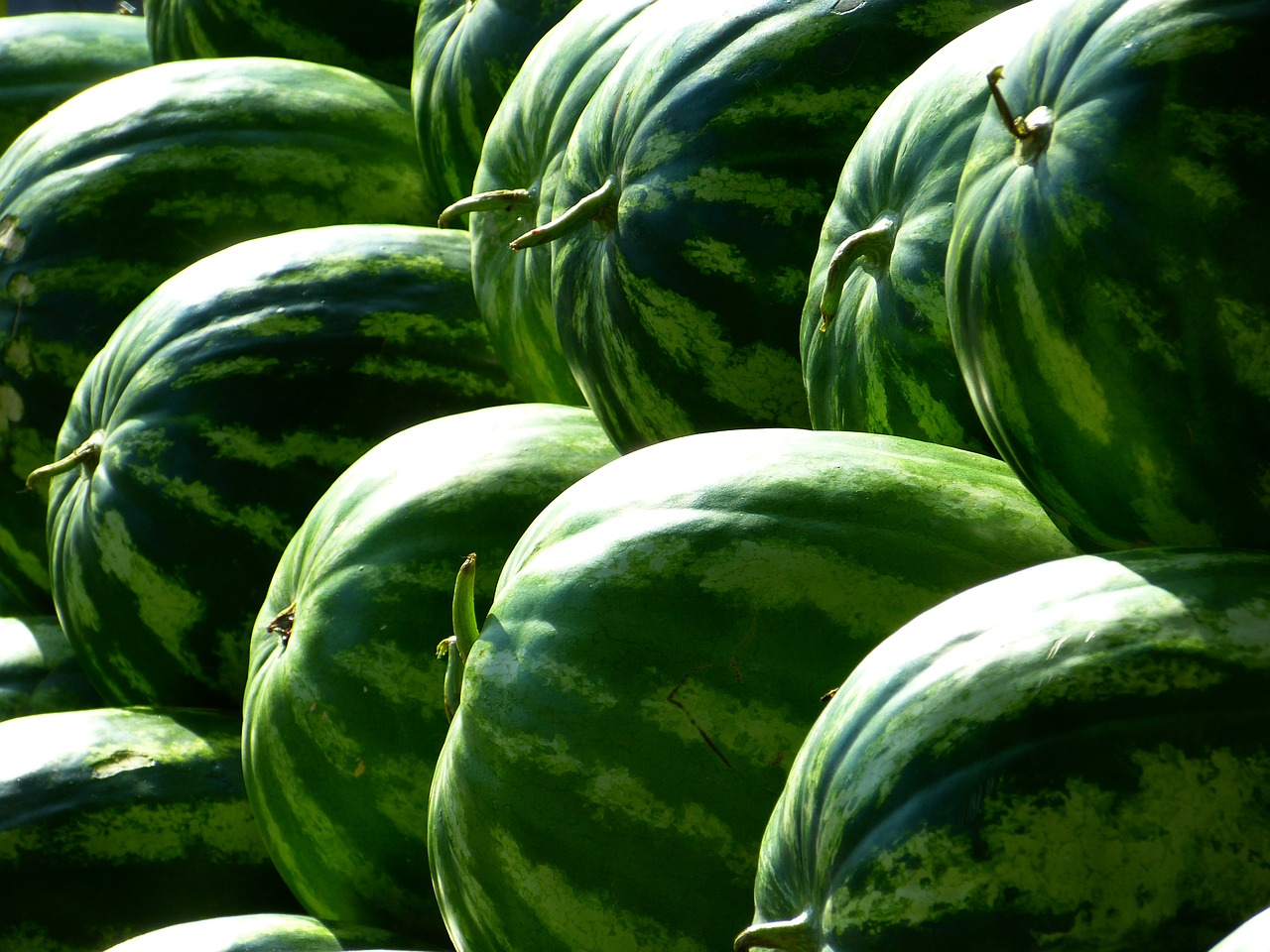 melons-197025_1280.jpg