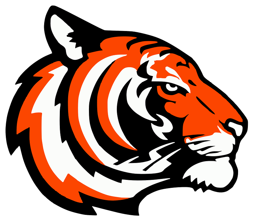 Free vector graphic: Tiger, Head, Logo, Isolated, Sports - Free ...