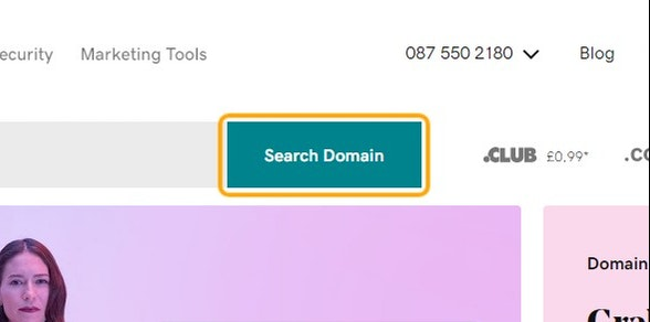 Click on Search Domain