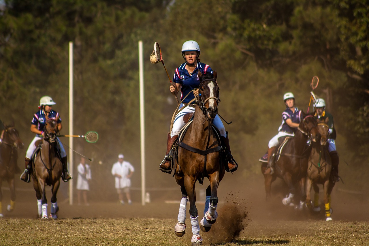 picture of a rider on a polo pony chasing a ball during a match,