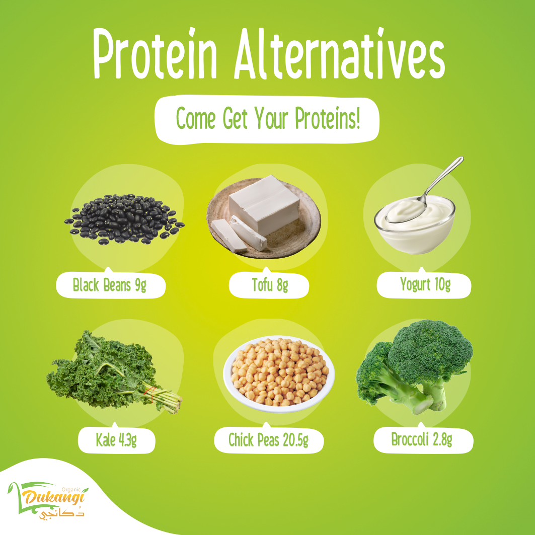 Non-meat Protein Alternatives