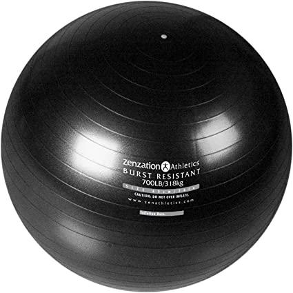 Trimax Sports Zenzation Exercise Ball