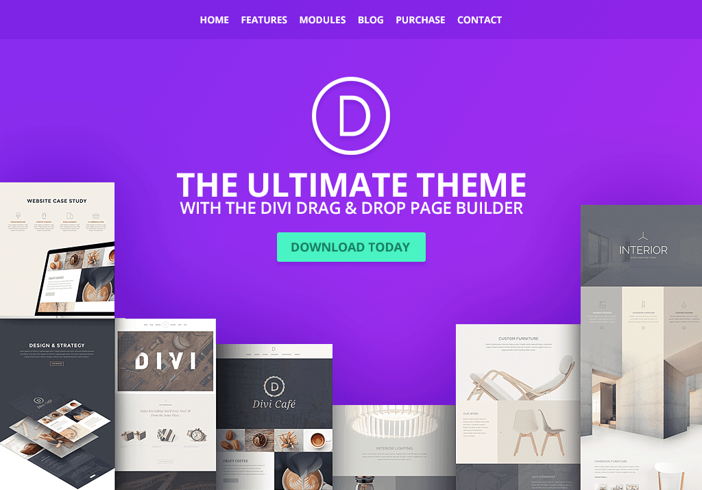 Wordpress ecommerce themes divi