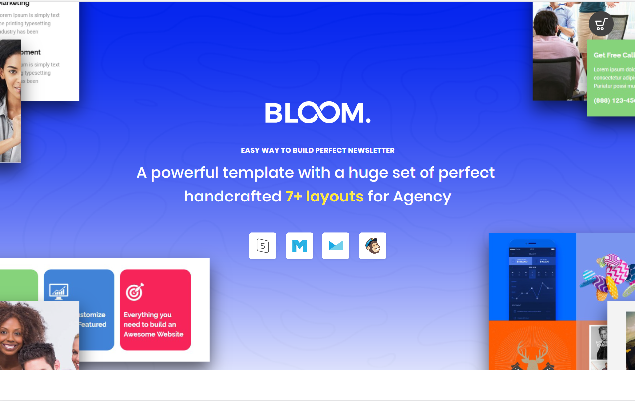 BLOOM Email Template