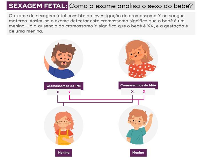 como a sexagem fetal descobre o sexo