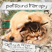 Organic Relaxation Music for Cats and Dogs, Vol. 6