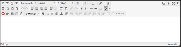 Image of the text editor with toolbars showing all the options that can be used to edit text