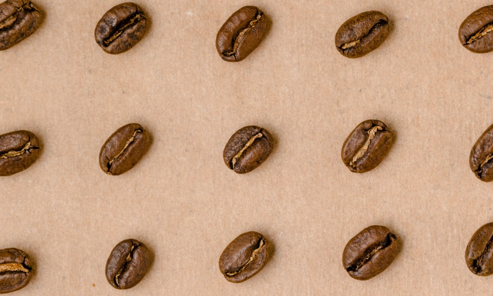 rows of coffee beans