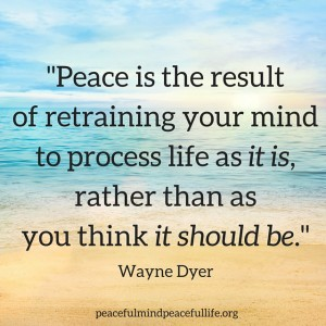 PEACE DYER.jpg