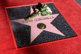 Image result for selena quintanilla star