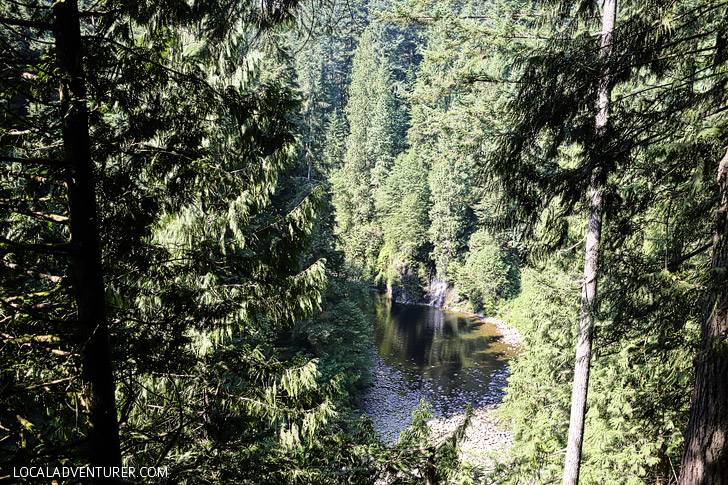Vancouver Capilano Suspension Bridge Park.