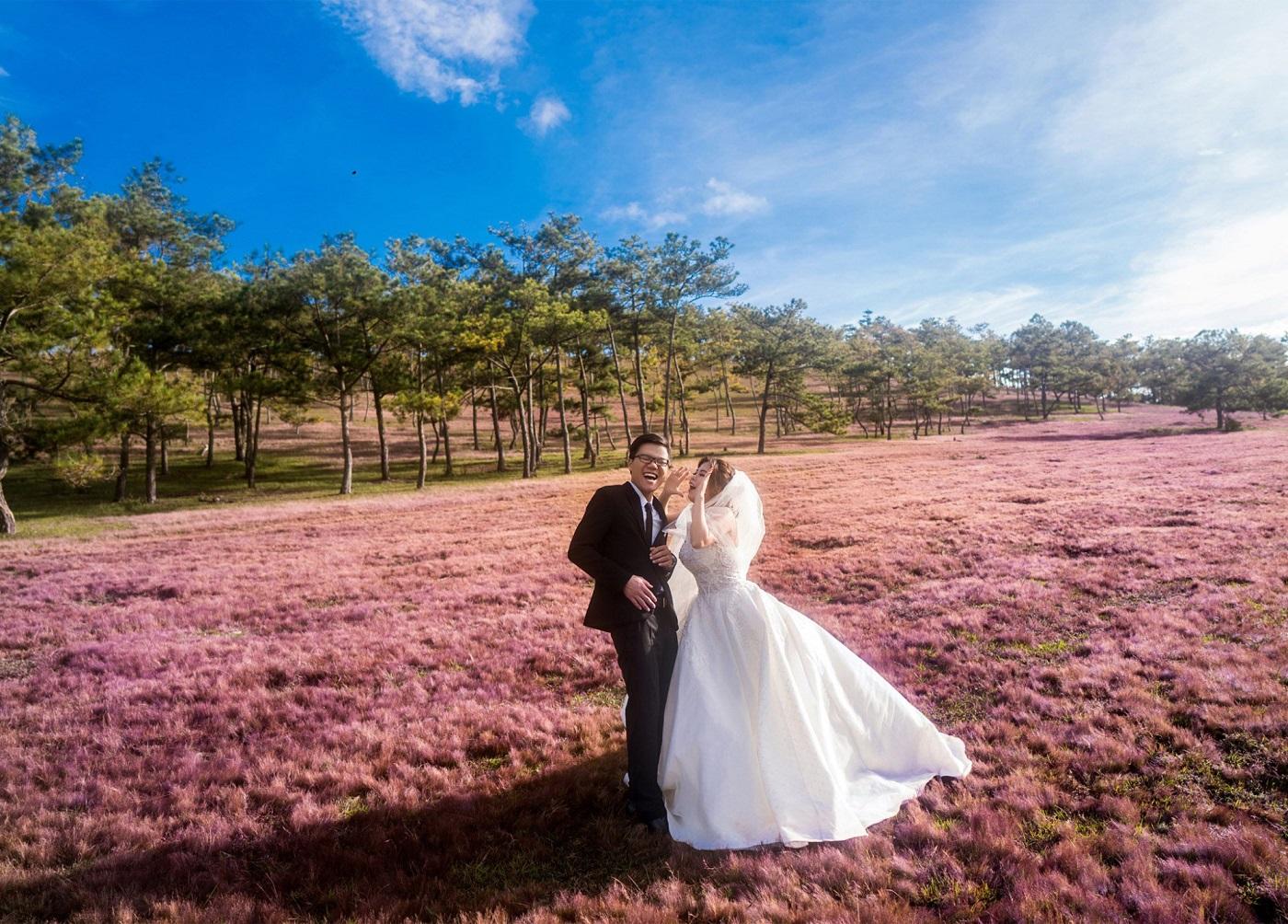 Chụp ảnh cưới tại đồi cỏ hồng Đà Lạt
