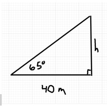 Right triangle containing given information the angle of elevation from horizontal side is given as 65 degrees.  The length of horizontal side is 40m. The vertical side length is labelled by the unknown variable, h.