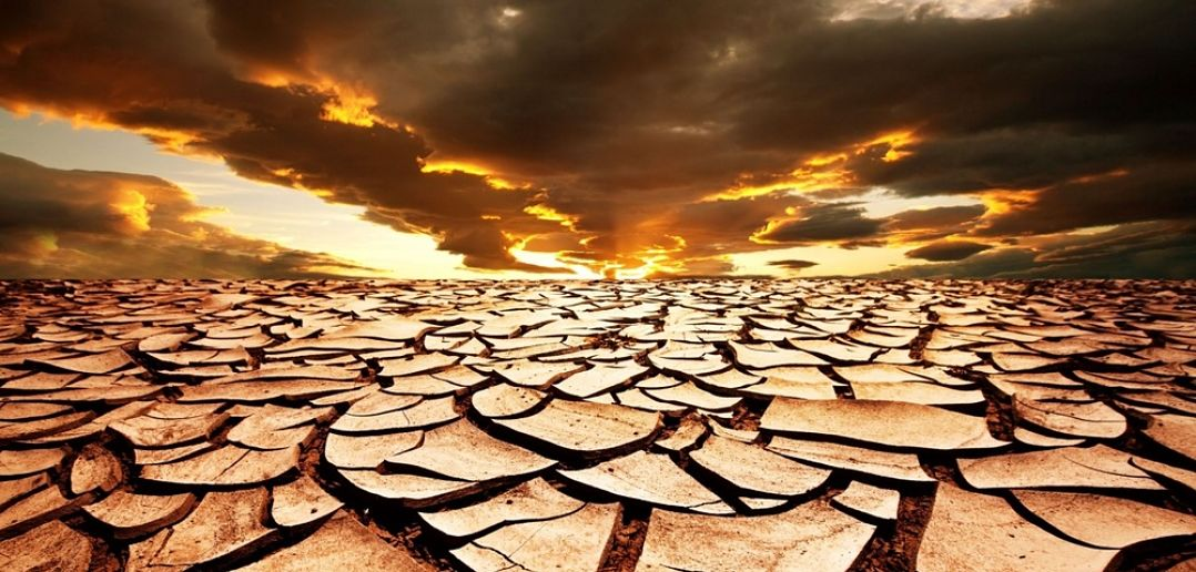 Image result for desertification
