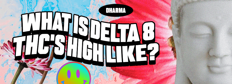 What is Delta 8 THC's high like?