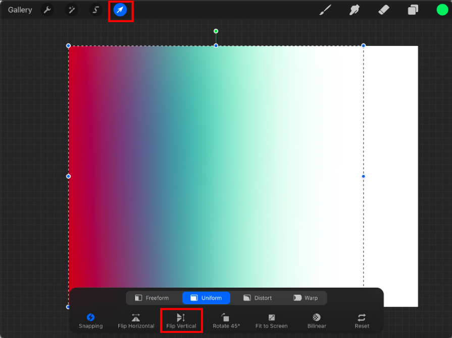 screenshot of a mirrored layer in procreate