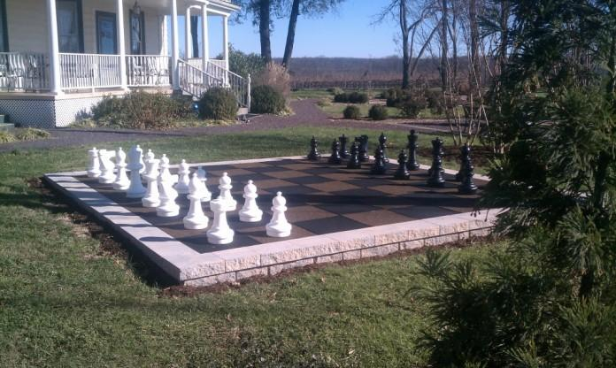Image result for backyard chess