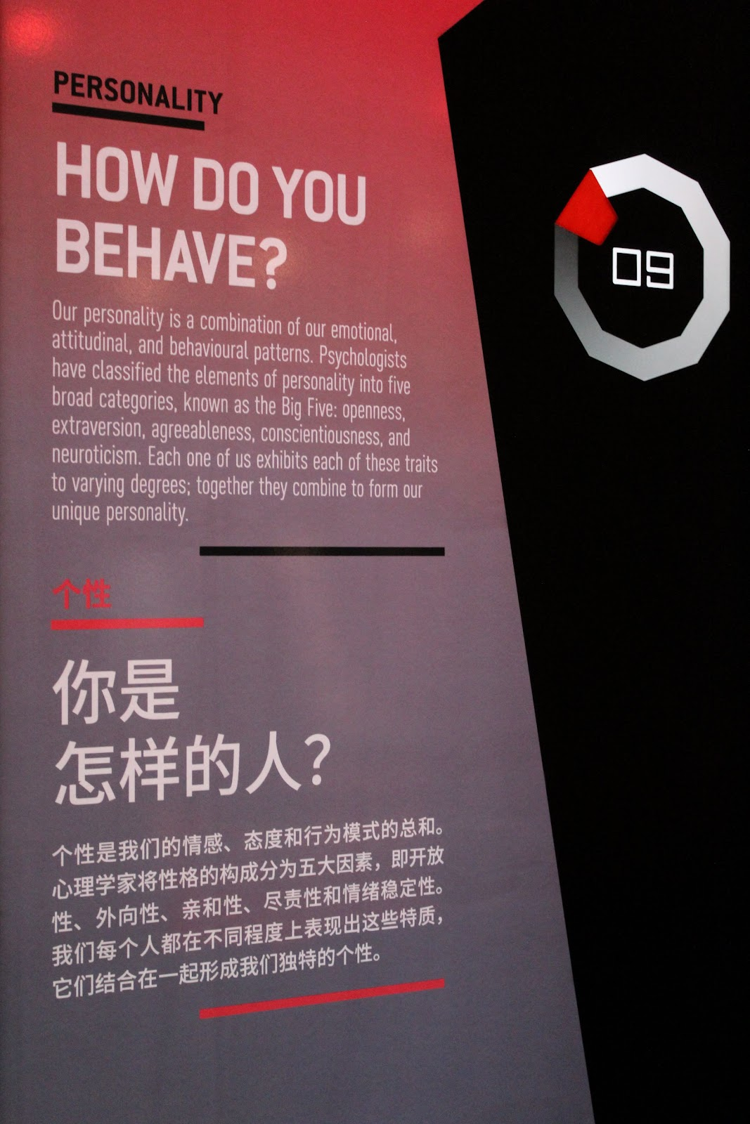 Information panel on personality