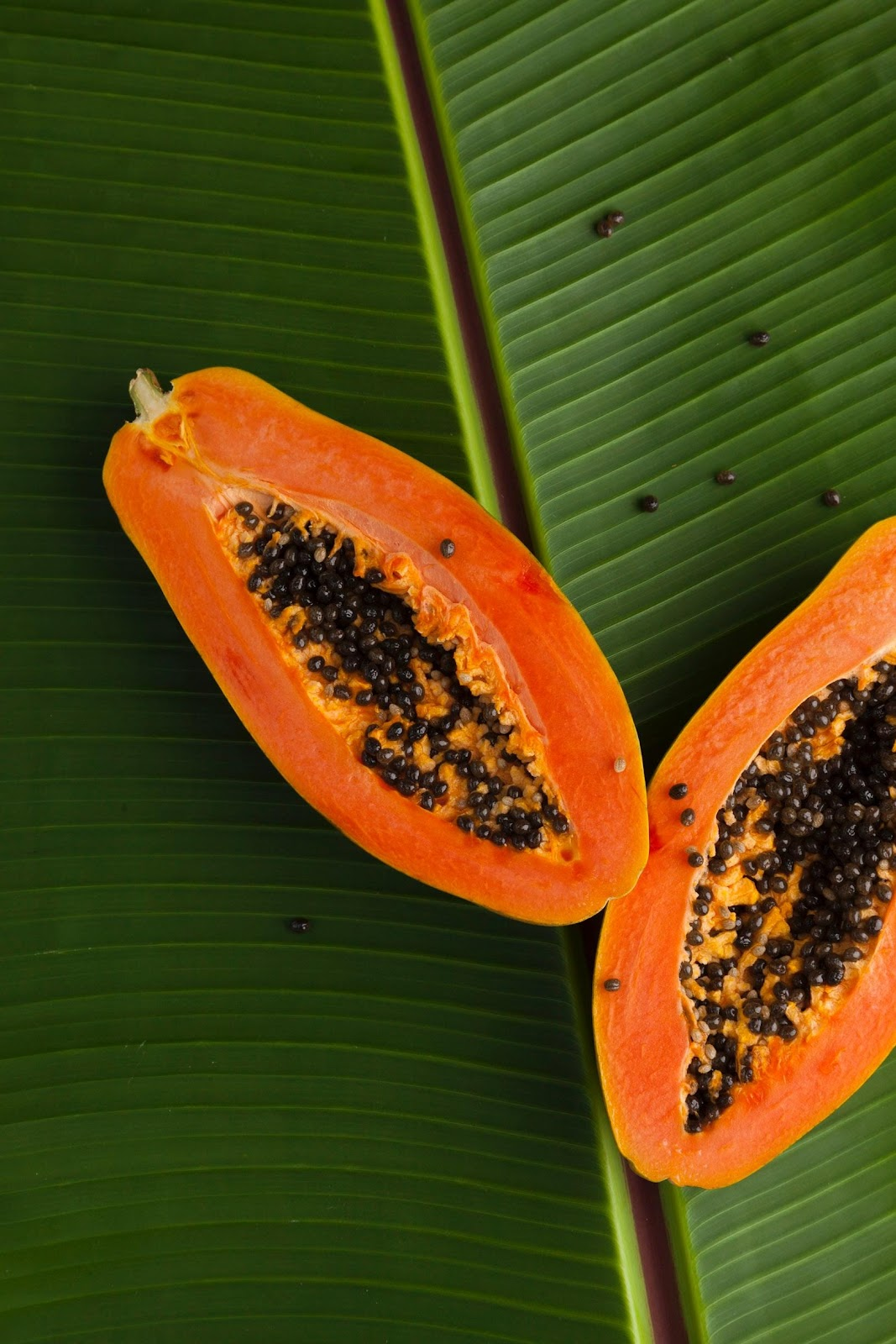 A picture containing fruit, papaya, orange, slice  Description automatically generated