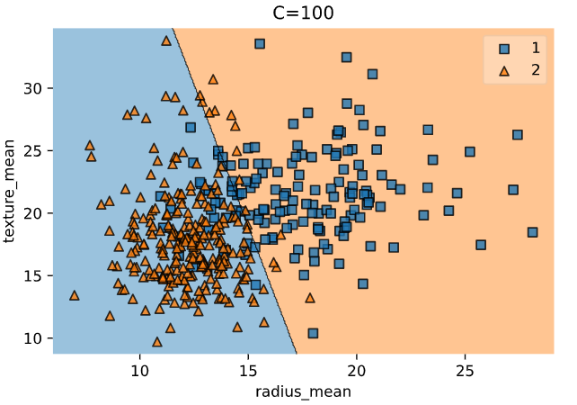 Fig. 7. Decision Boundary with C = 100