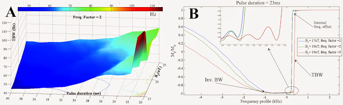 TBW simulated for different B1+ values and pulse durations, with a frequency factor of 2. B) Longitudinal magnetization profile simulated for different B1+ values and frequency factors for a pulse duration of 23 ms