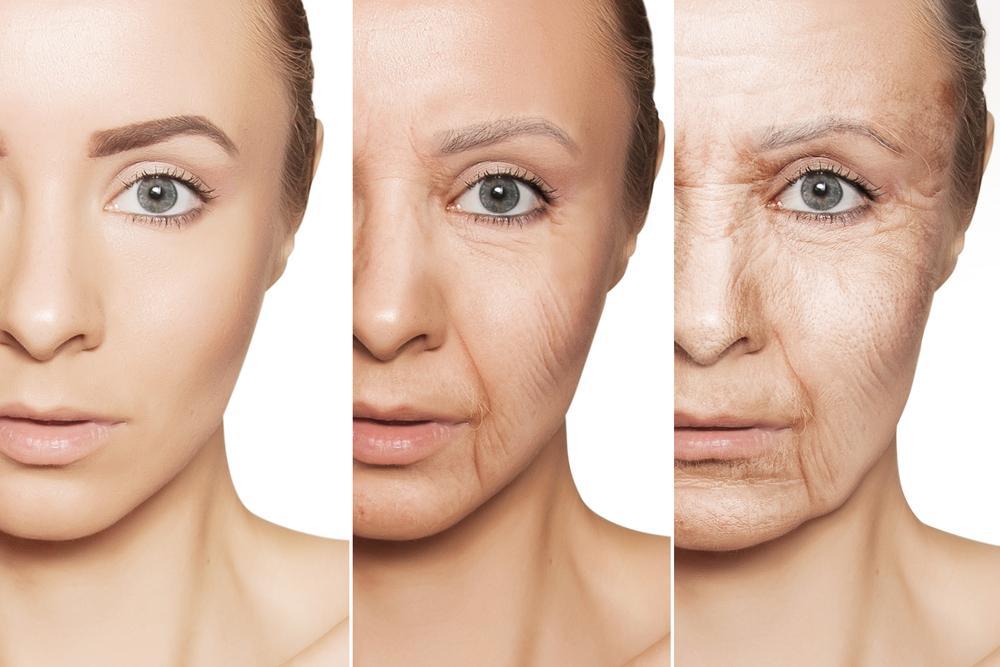 A Novel Biomarker for Skin Aging | Lifespan.io