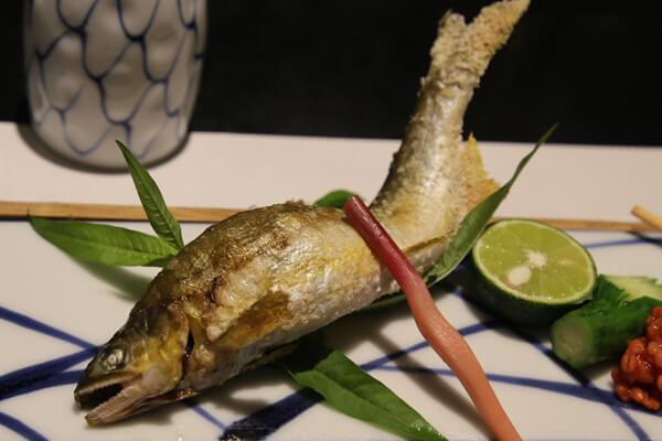 香魚總是日本料理店中熱銷排行前五名內的魚種,小小的魚身卻能釋放令人驚豔的香氣及細嫩口感。