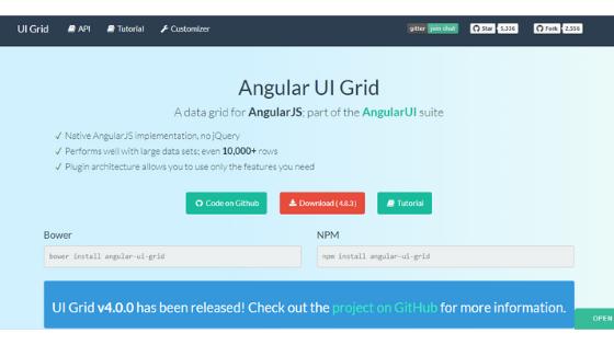 Angular UI Framework:Angular UI Grid