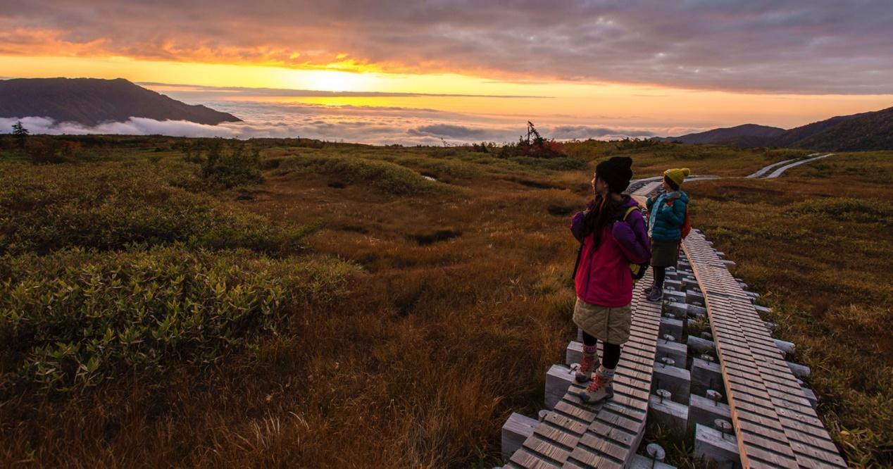 Walking down sunset