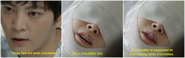 YPe8 crocodiles.jpg