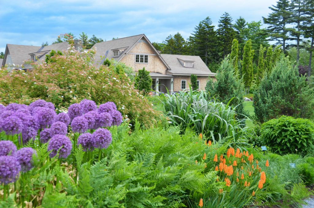 10. See what's in bloom at the Coastal Maine Botanical Gardens