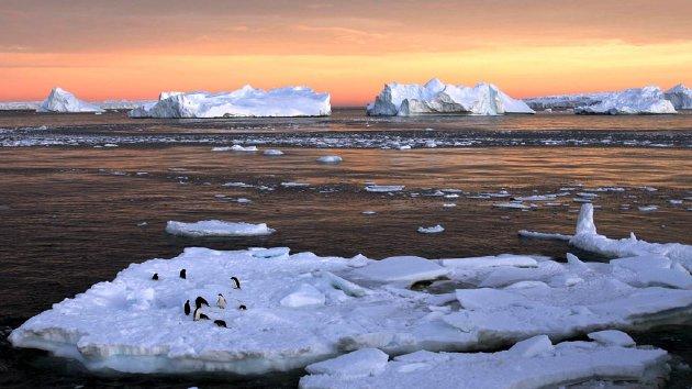 Burung Penguin  bermain di atas es yang sebagian mencair di Dumont d' Urville di Antartika dalam dokumentasi foto tanggal 22 Januari 2010.