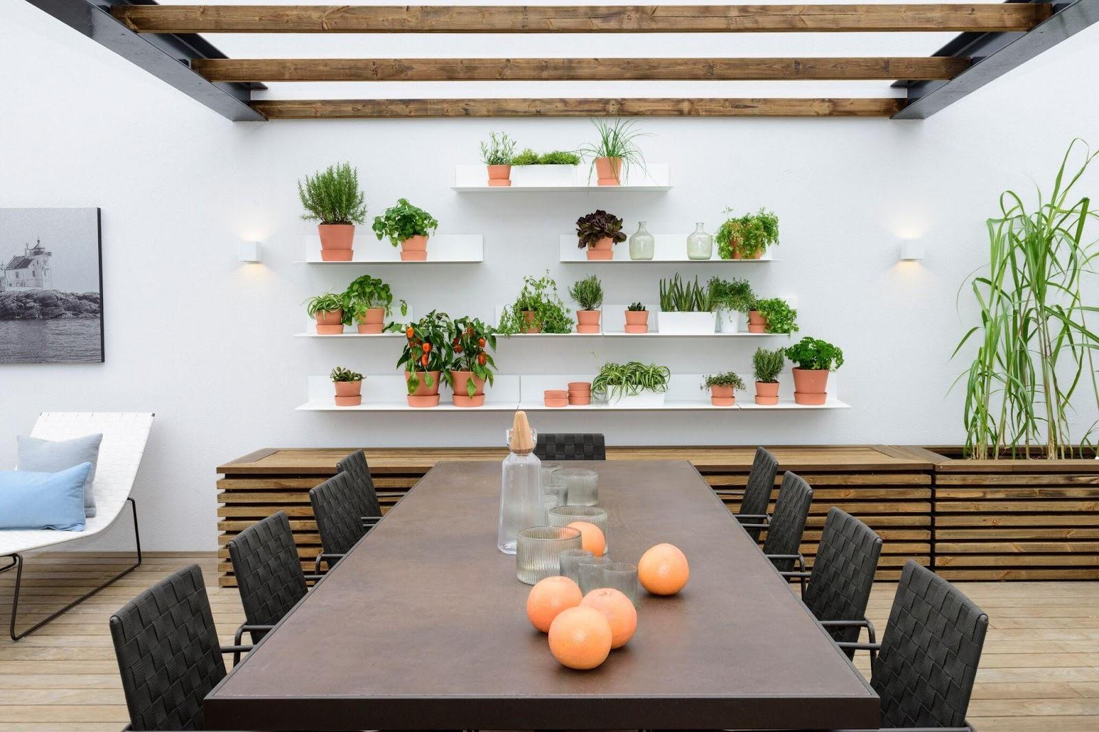 tag naturen til tagterrassen med potteplanter af forskellig størrelse
