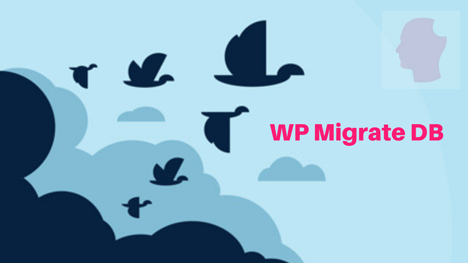 WP Migrate DB - wordpress migration plugins