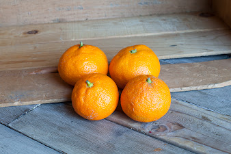 Photo of the share - Murcott Tangerines