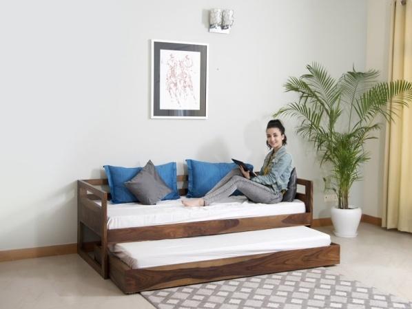 Hugo-Sofa-Cum-Bed-with_underbed1.jpg