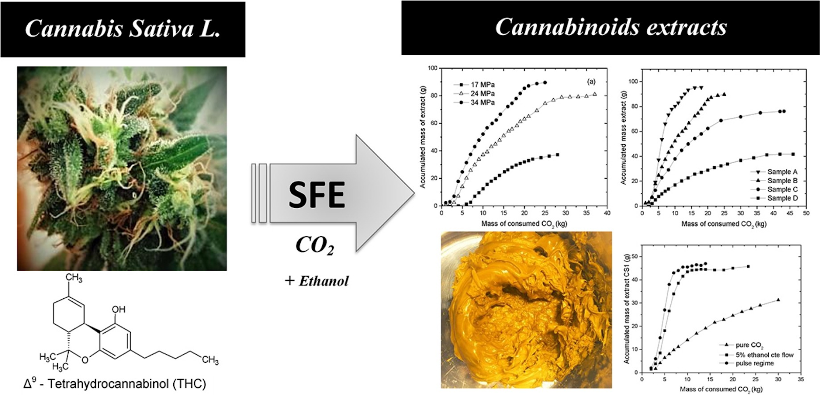 carbon dioxide extraction for CBD oil