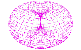 What makes the torus such an interesting shape? - Quora