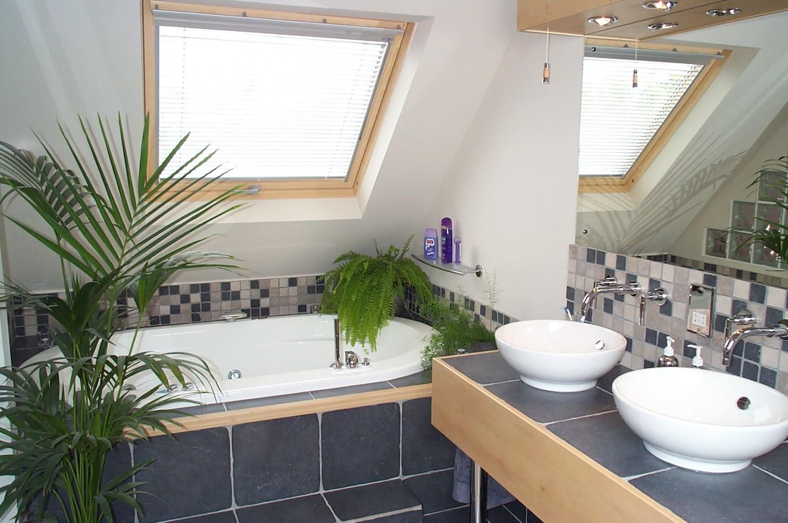 attic bath.jpg