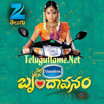 Brindavanam Serial – Episode 134 – 05th Dec