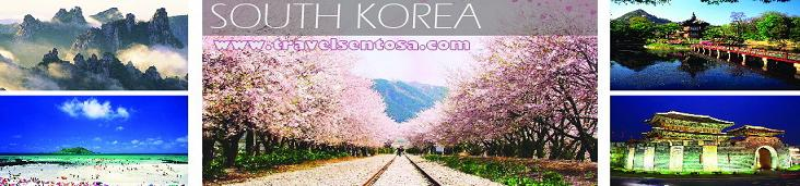 South Korea Tour Holiday Vacation