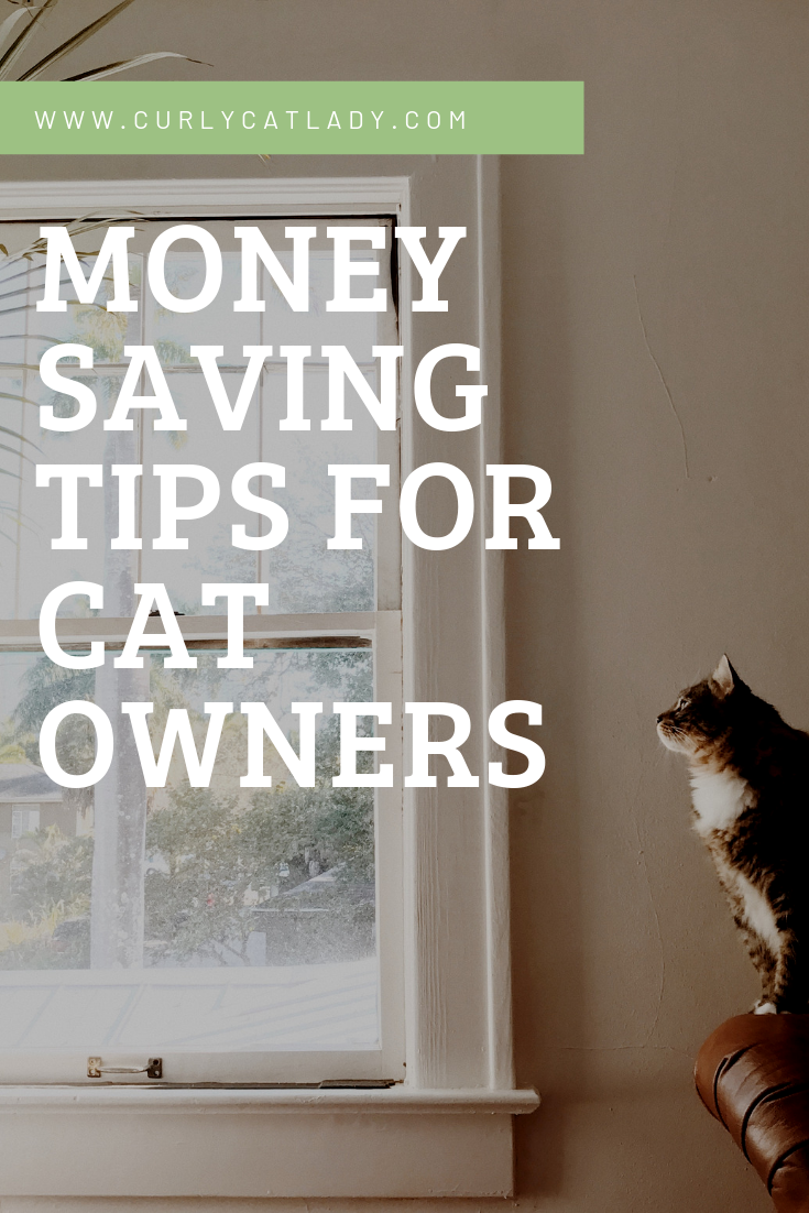 Money saving tips for cat owners