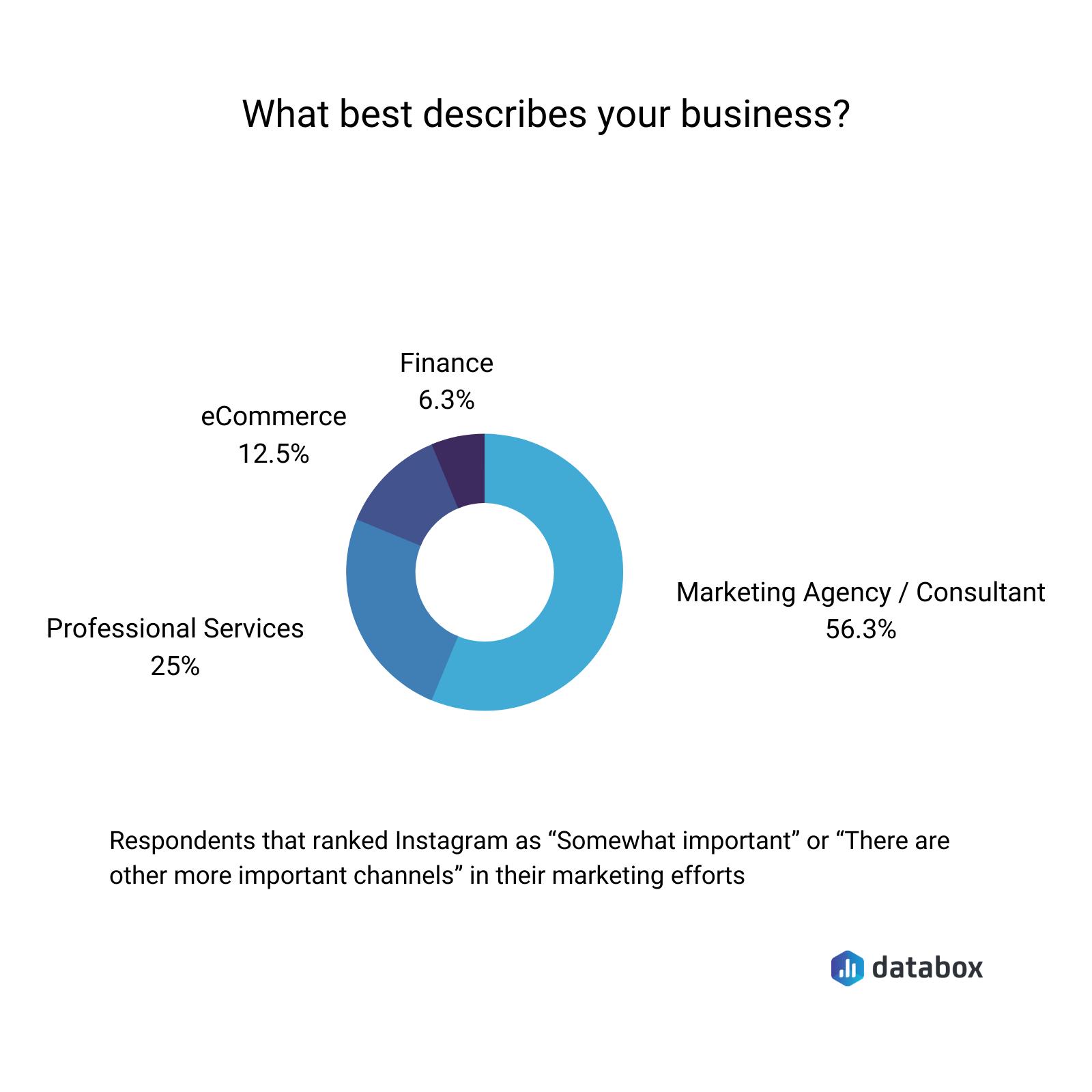 Databox survey results - respondents profile