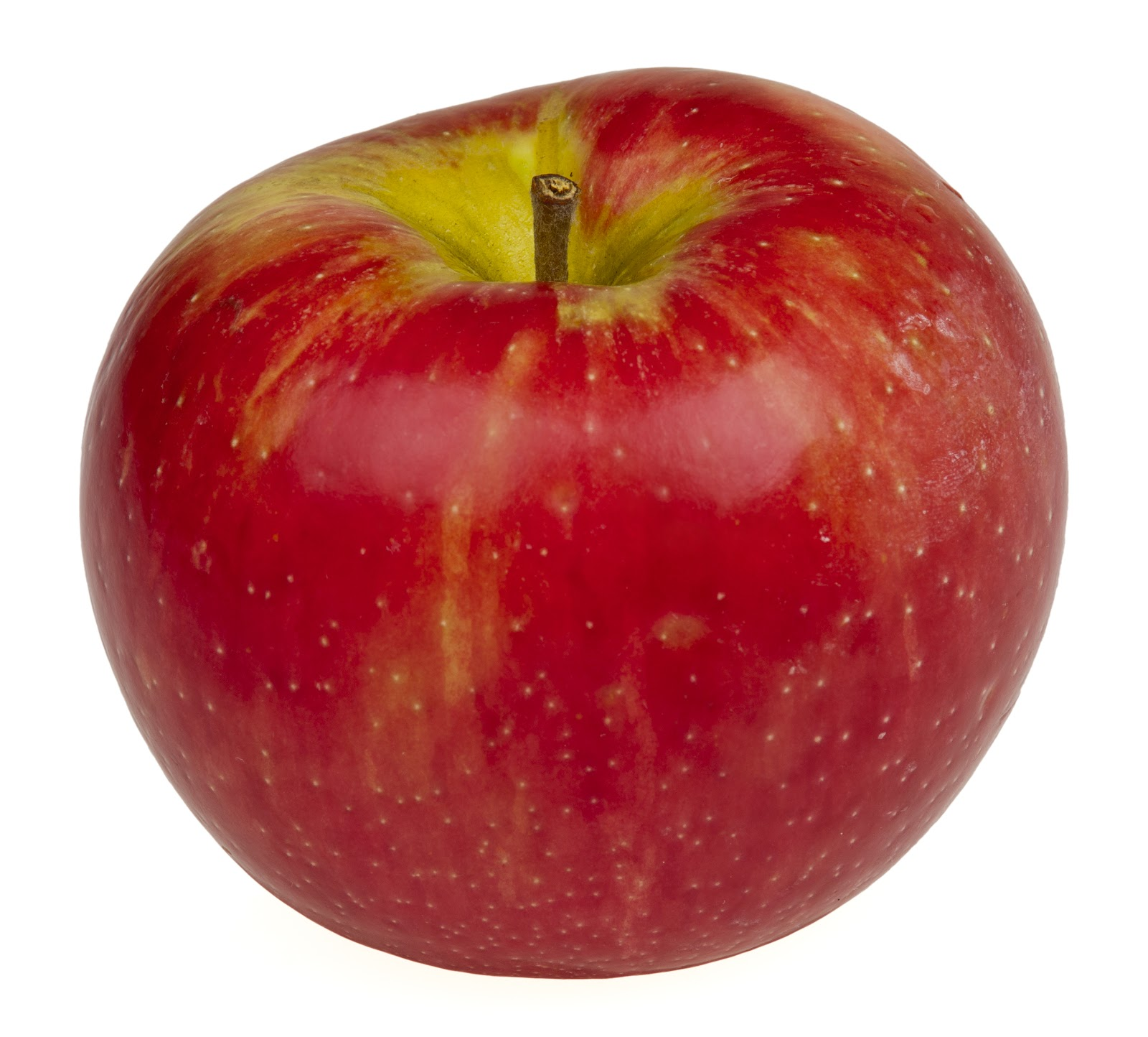 File:Honeycrisp-Apple.jpg - Wikimedia Commons