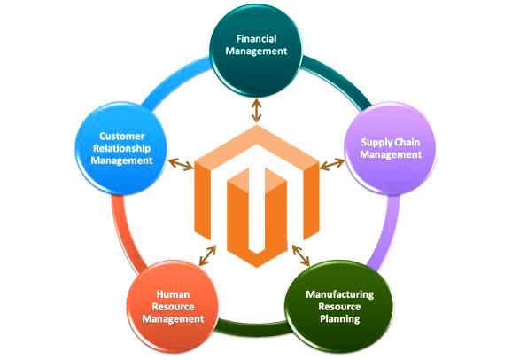Enterprise Resource Planning: Magento 2 ERP Integration | FireBear
