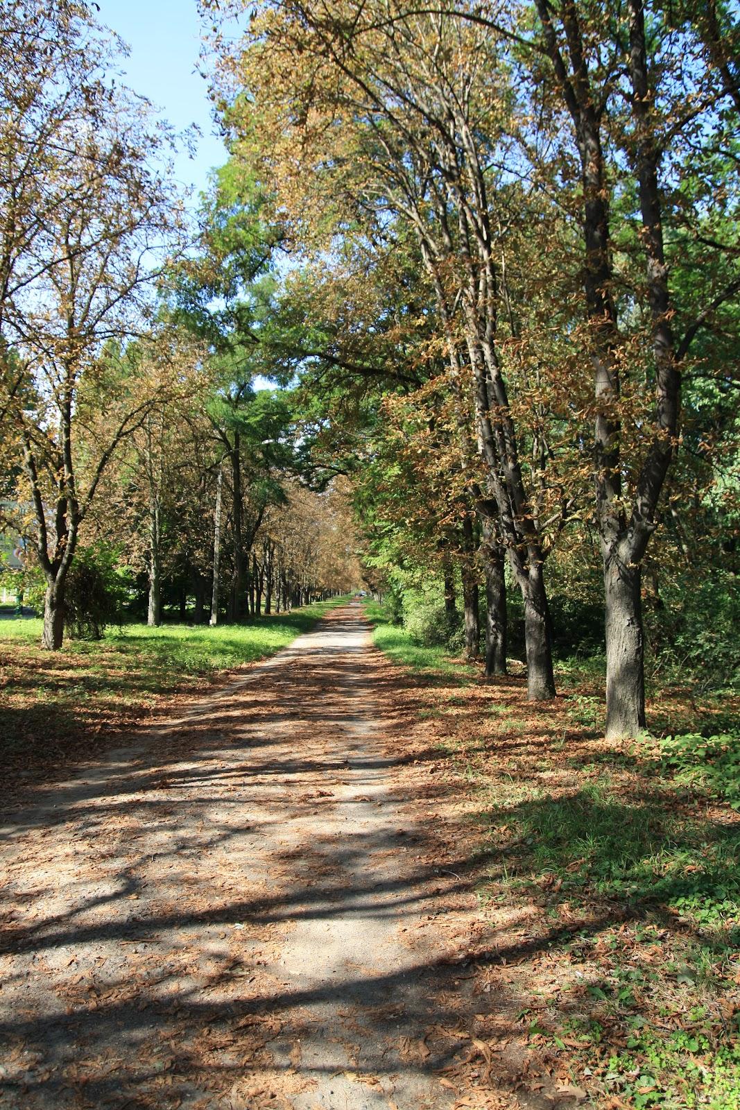 Боздоський парк в Ужгороді