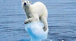 """Résultat de recherche d'images pour """"le climat"""""""