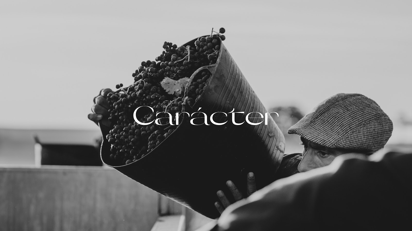 Caracter_brand