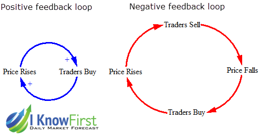 Example of Positive and Negative Feedback Loops